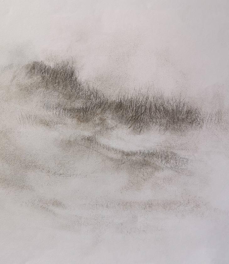 Lisière d'herbes – fusain sur papier