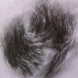 Bois du repos éternel - fusain sur papier